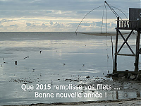 voeux 2015